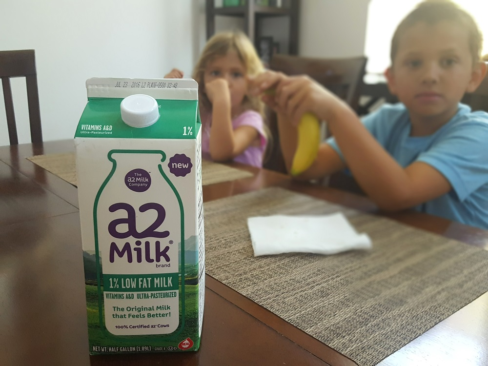 Healthy snacks with a2 Milk® #a2milk #ad #IC